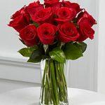 12-red-roses-vase