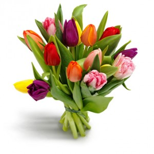 Assorted Tulips Bouquet