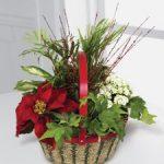 Christmas Premium Planter