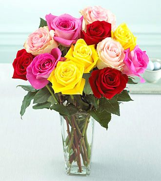 Assorted Colors Roses