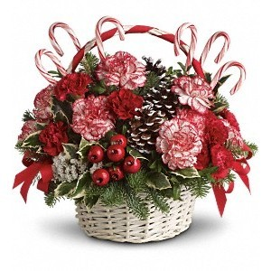 Candy Cane Christmas Arrangement