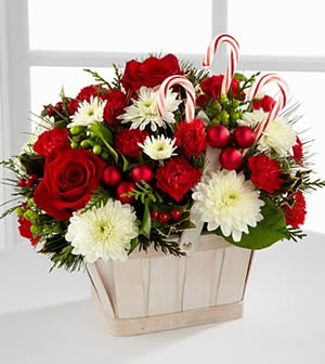 Candy Cane Flower Basket