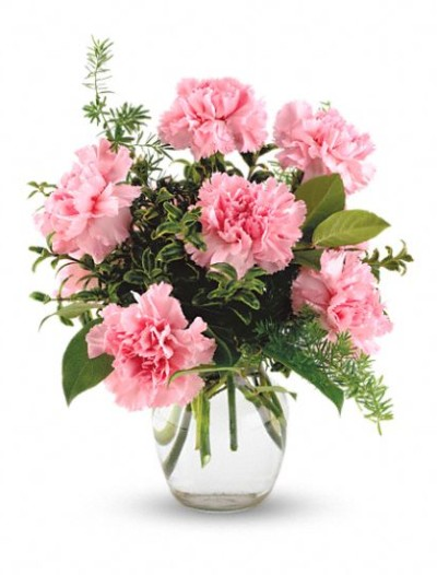 Pink Lovely Carnations