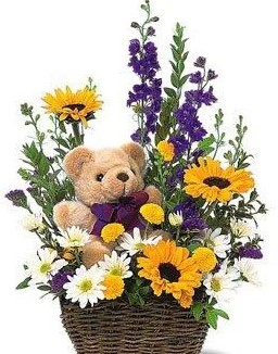 Teddy Bear Basket Arrangement