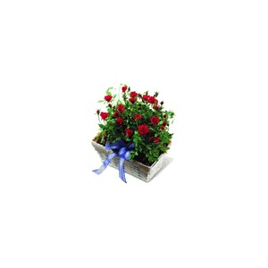 roses village planter